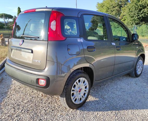 Fiat Panda ibrida Flamini Auto concessionaria Bracciano