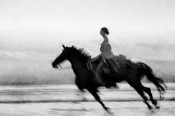 Horse on the Beach #10 2017-11-18