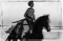 Horse on the Beach #26 2017-11-18