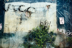 Art Along The Tiber River #3