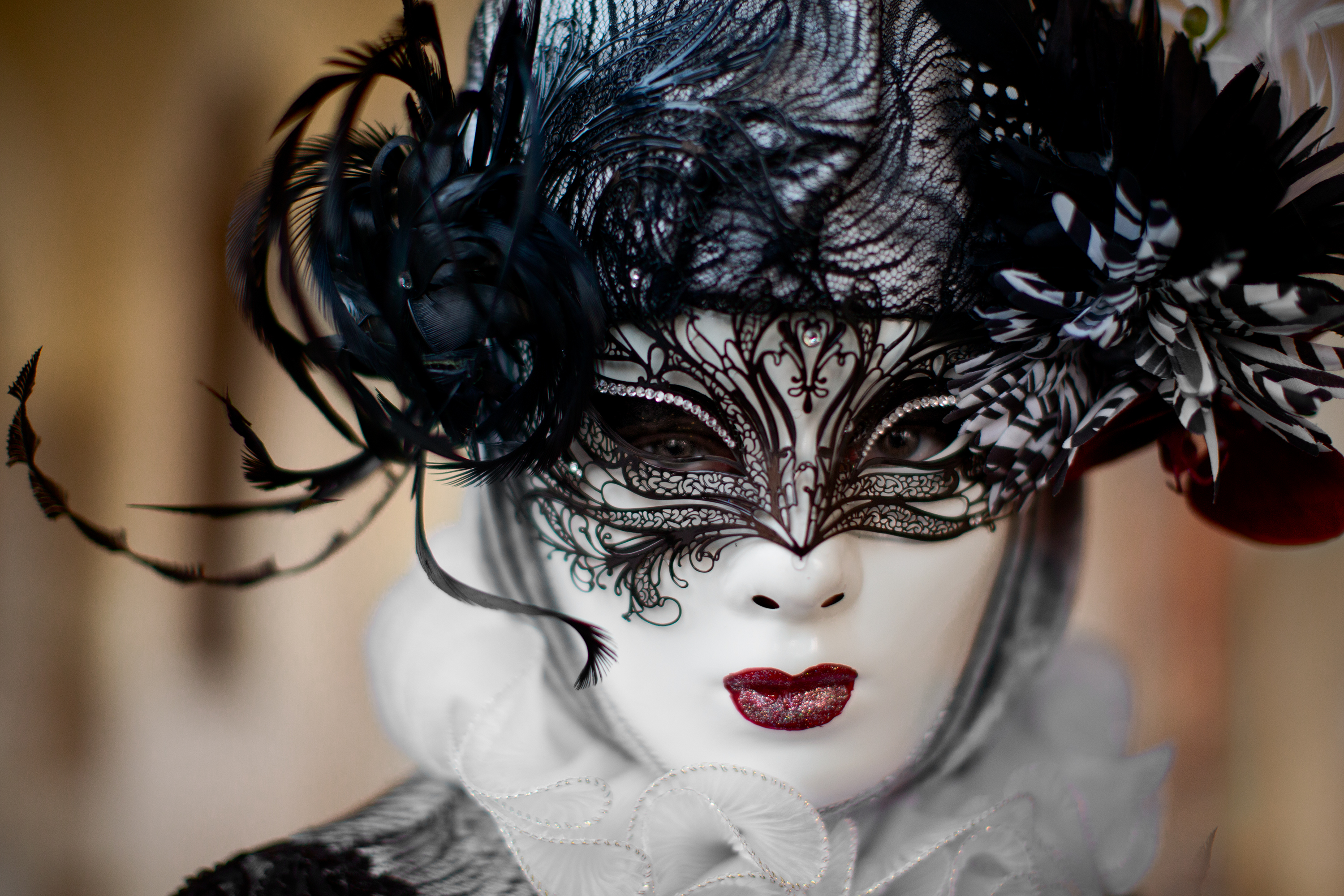 Performer in Black Feathered Mask