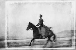 Horse on the Beach #18 2017-11-18