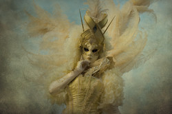 Feathered Angel #3
