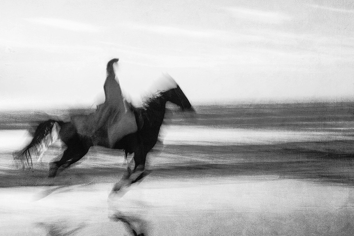 Horse on the Beach #6 2017-11-18