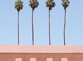 Palm-Tree-Factory.jpg