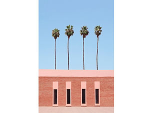 Palm-Tree-Factory_preview.jpg