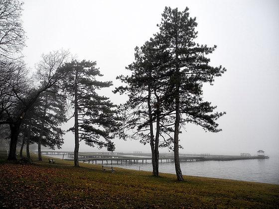Autumn on Lake Palić