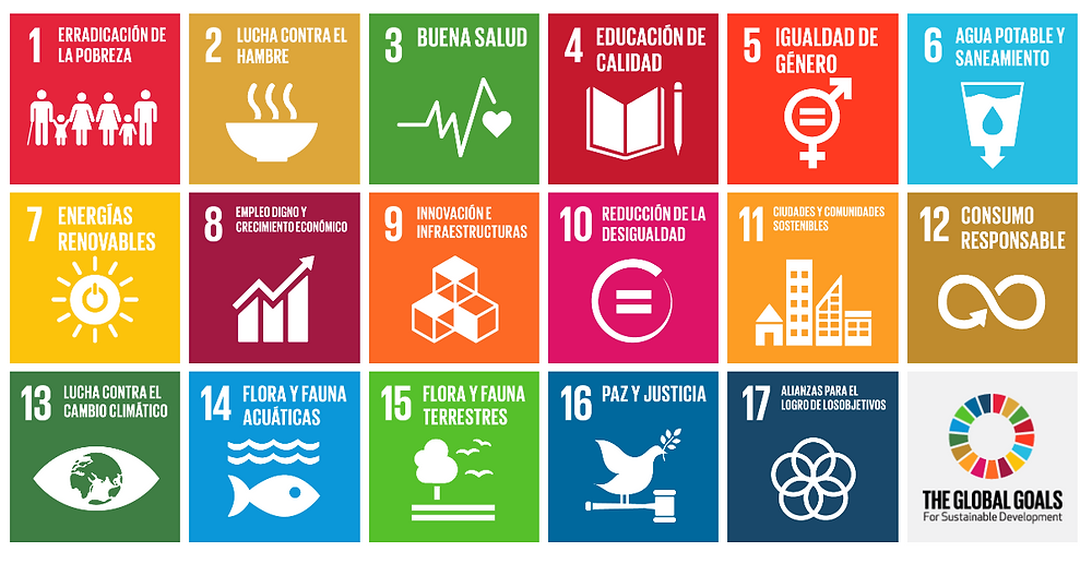the global goals red apple school