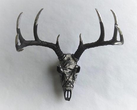 10 Point Deer Skull