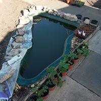 The pond underway