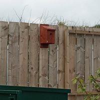 Birdbox - made by a pupil at Hetton Scho