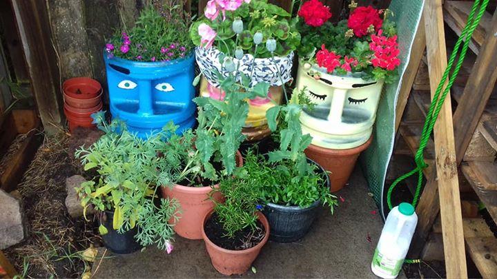 Carnival plant pots