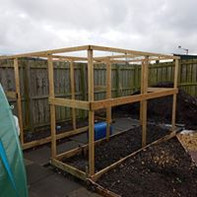 Building the fruit cages