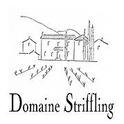LOGO Domaine Striffling.png