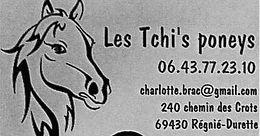 Les Tchi's poneys