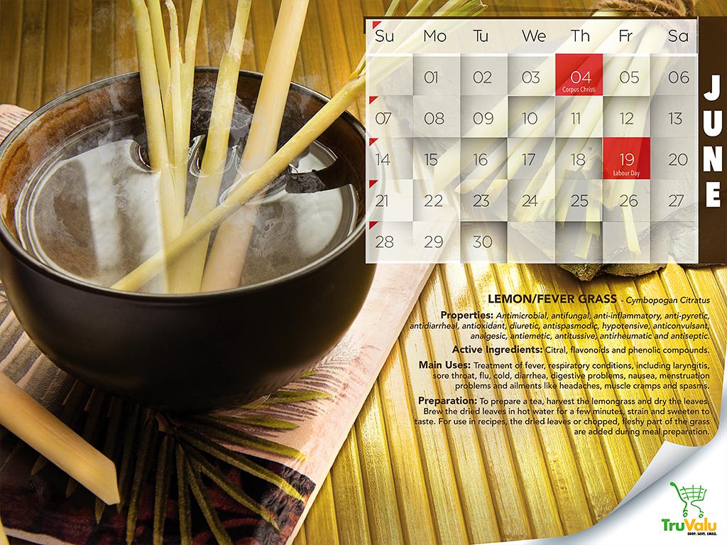 Tru Valu Calendar- Addy Award Winner