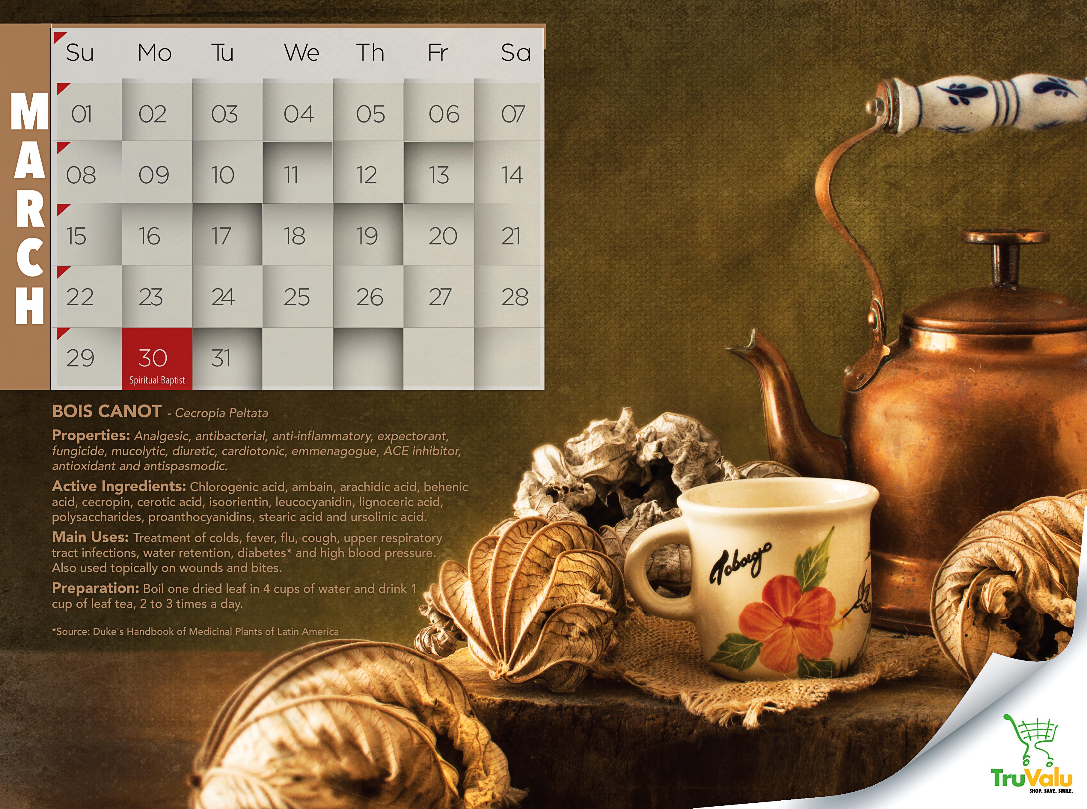 43028 Tru Valu Calendar MARCH 2015 hi