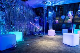 Disco Party-WEBsize -20000491.jpg