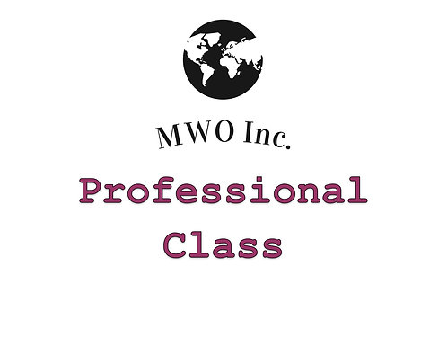 Gamer Professional Class Fee