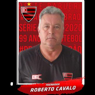 bbb figurinha pronta ROBERTO CAVALO 2.pn