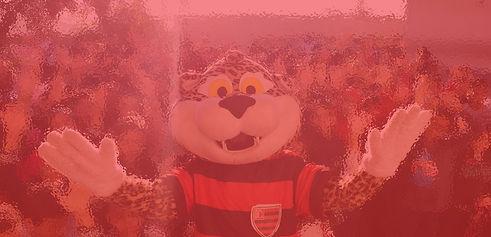oeste mascote avermelhado.jpg