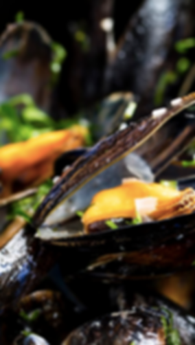 Couqley Moules Frites