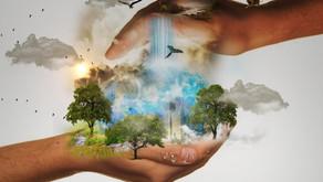Cosa Non Abbiamo Mai Fatto Per l'Ambiente?