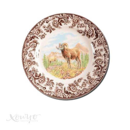 SPODE BIG-HORN SHEEP