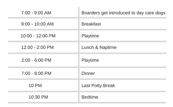 Dog Boarding Schedule