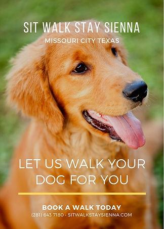 Dog Walking Missouri City