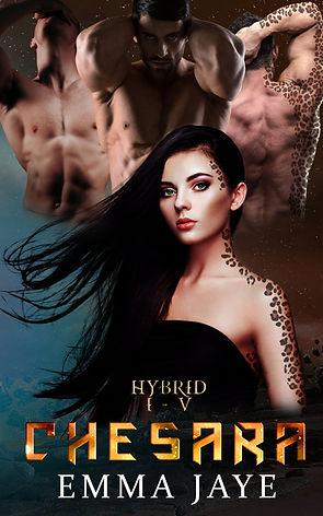 hybrid-ebook-cover.jpg