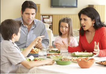 Family Counseling(Online/telehealth)
