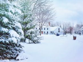 5 Winter Tips to Prepare a Landscape for Spring