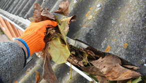 Do You Make These Gutter Cleaning Mistakes?