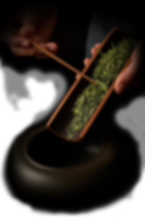 web 2020 - houjicha (softest stems)4.png