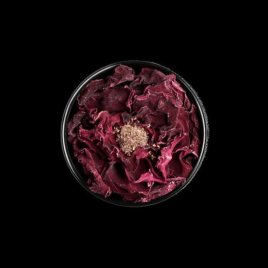 idealist rose (25g)