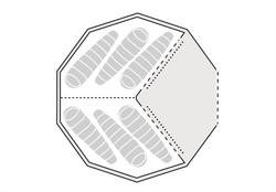 130170_Inner tent Field Station_Drawing Floorplan_2