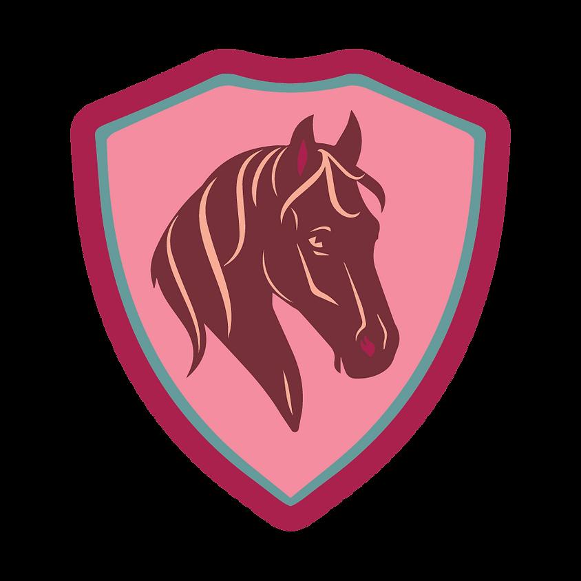 Hoo-Ha Pony Races