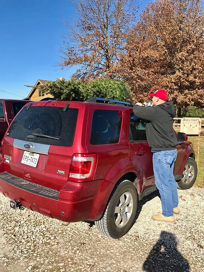A customer ties a tree to his car at Otterdale View Farm.