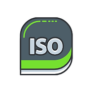 ISO 19011.png