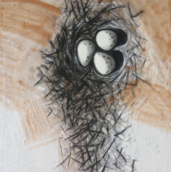 """Killdeer nest 3, 12""""x 12"""""""