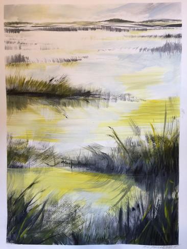 farm wetlands