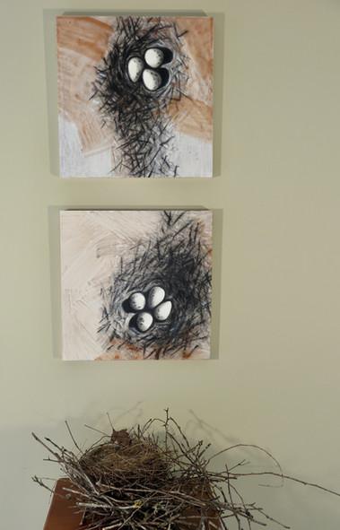 "Killdeer nest 3 & 4, 12"" x 12"" each"