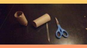 Semilleros con rollos de cartón.