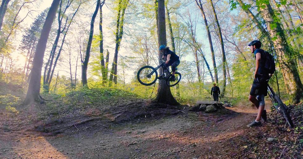 Rider: Unbekannt