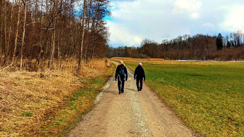 Die letzten Meter des Wanderweges führen auf einem Forstweg direkt nach Windach hinein