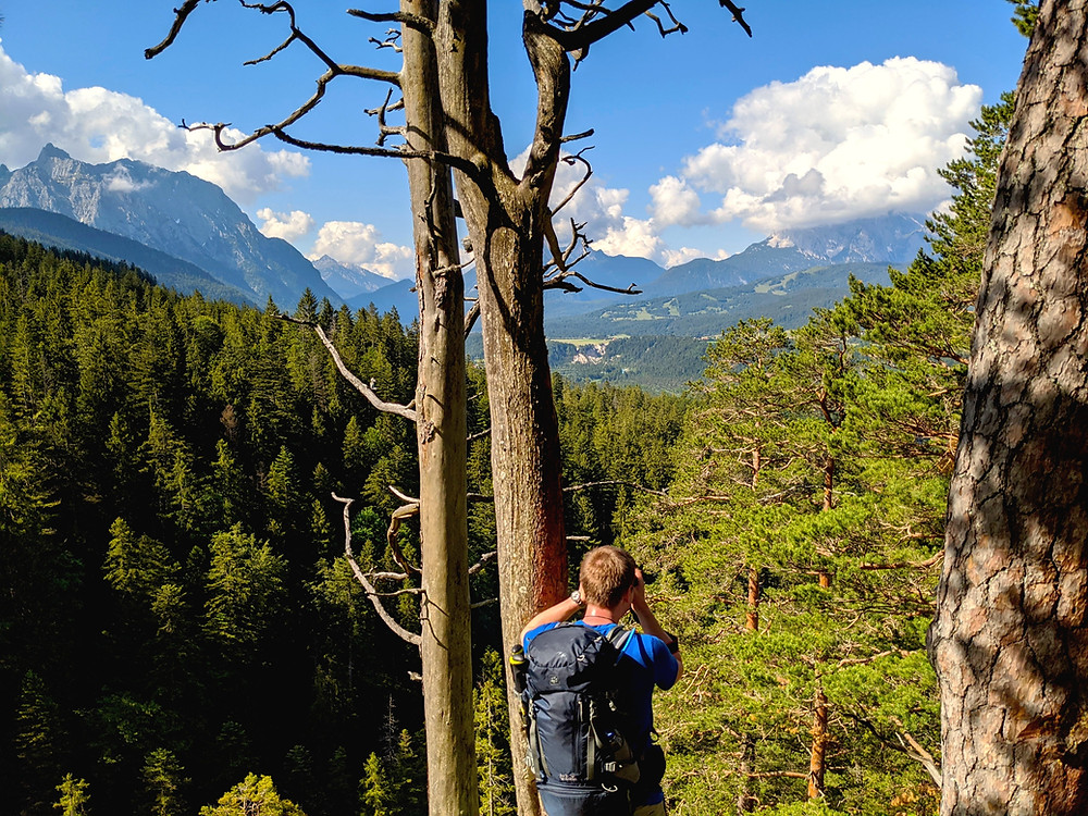 Der traumhafte Alpenblick vom Schwarzkopf im Sommer