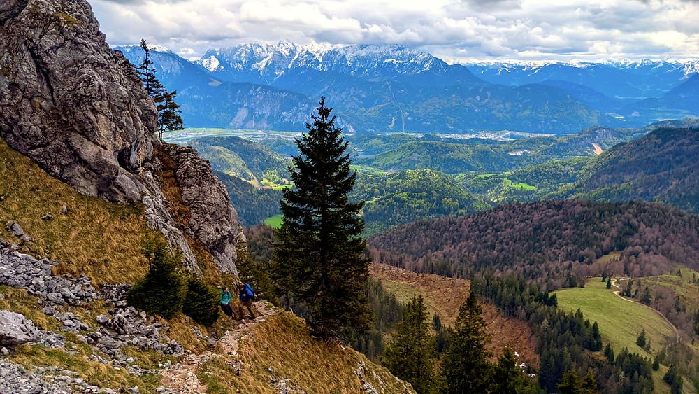 Der Dr. Julius Mayer Weg kurz vor dem Gipfel des Brünnstein