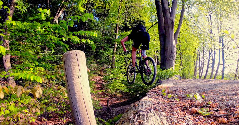 Rider: Clemens Pfeiffer Gálvez