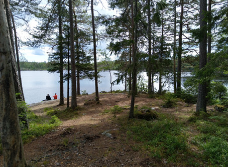 One Day in: Stockholm - Hiking the Tyresta National Park
